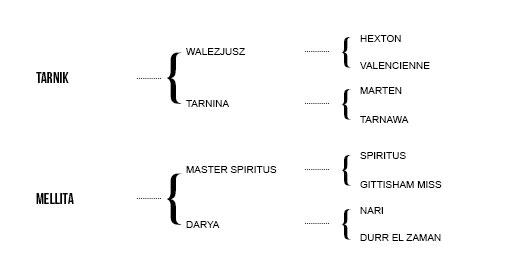 http://www.biddesdenstud.co.uk/wp-content/uploads/2013/06/tamarillo-pedigree.jpg