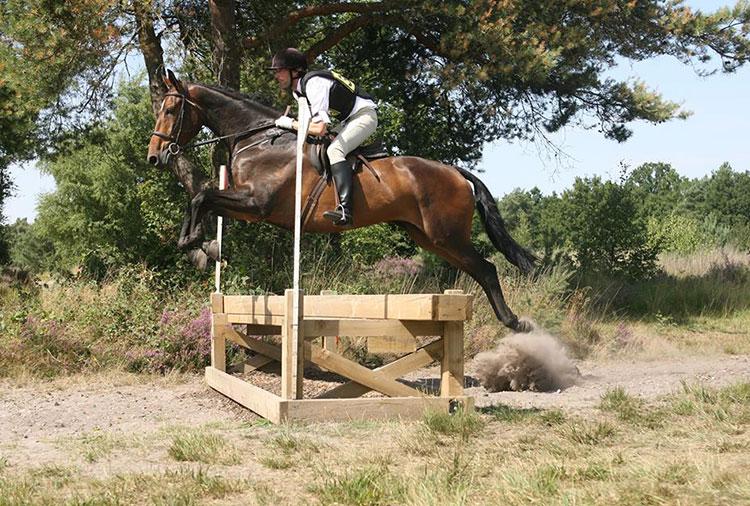 alcibiades-jump