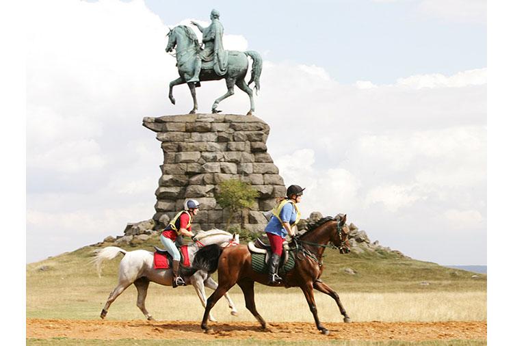 http://www.biddesdenstud.co.uk/wp-content/uploads/2013/07/drongo-statue.jpg