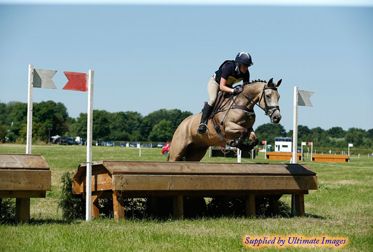 Oare House Hero (Welsh Cross 2011)