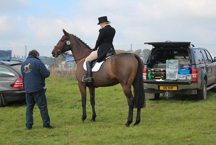 Persephone at Aldon Horse Trials 2016