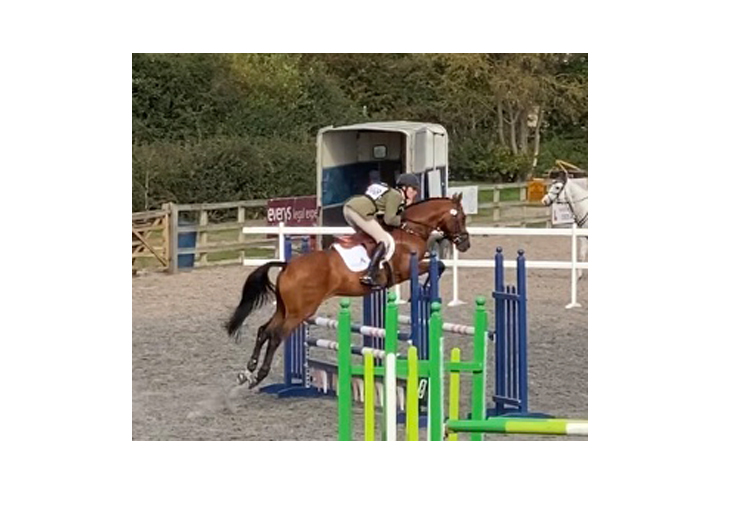 http://www.biddesdenstud.co.uk/wp-content/uploads/2021/01/tomatillo-showjump.jpg